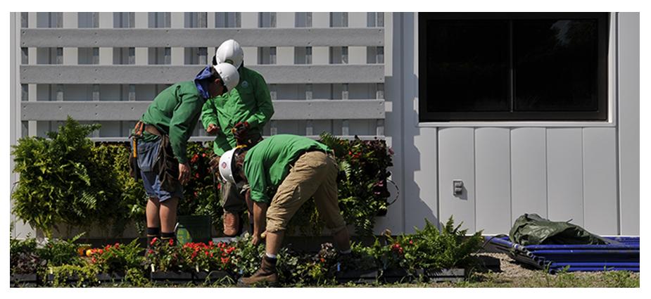 Horticulteur paysagiste for Horticulteur paysagiste